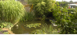 Cr ation de parcs et jardins luxembourg jacky pirot for Entretien jardin luxembourg