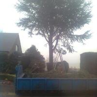 Photo0192.jpg