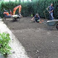 jardins et sapins 075.jpg